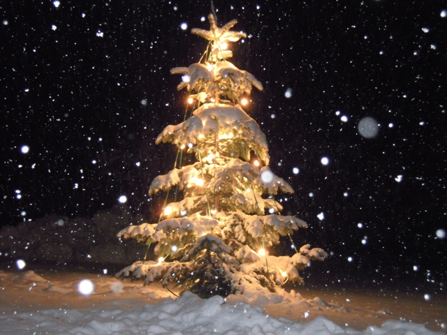 Weihnachten für Alleinlebende